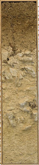 Bodenprofil Ried Feiersteig